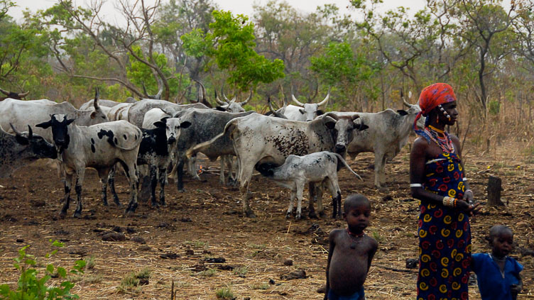 TB070747-Peul-nomads-in-the-Natitingou-region.jpg