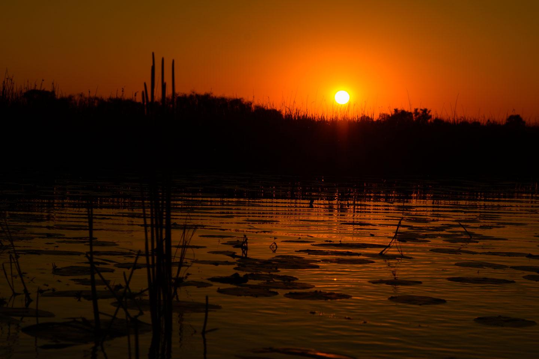 ZA131453-Okavango-Delta-sunset.jpg