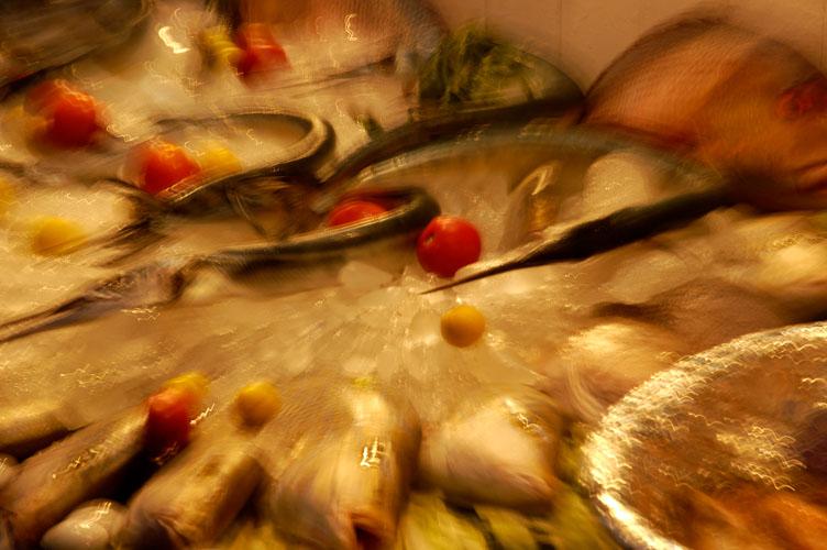 EG05103-Fish.jpg