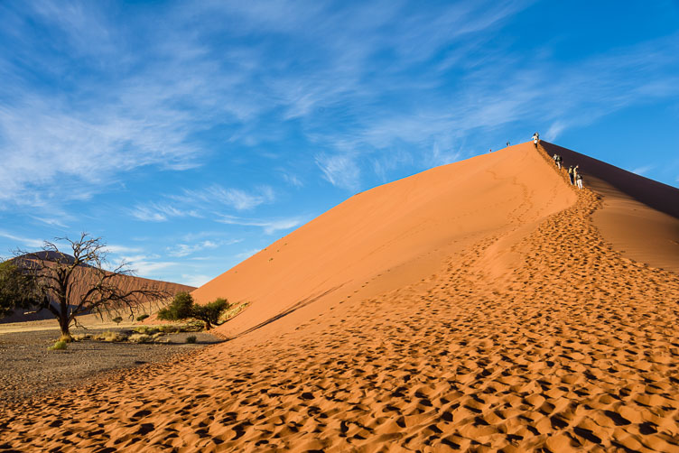 ZA130863-Dune-45.jpg