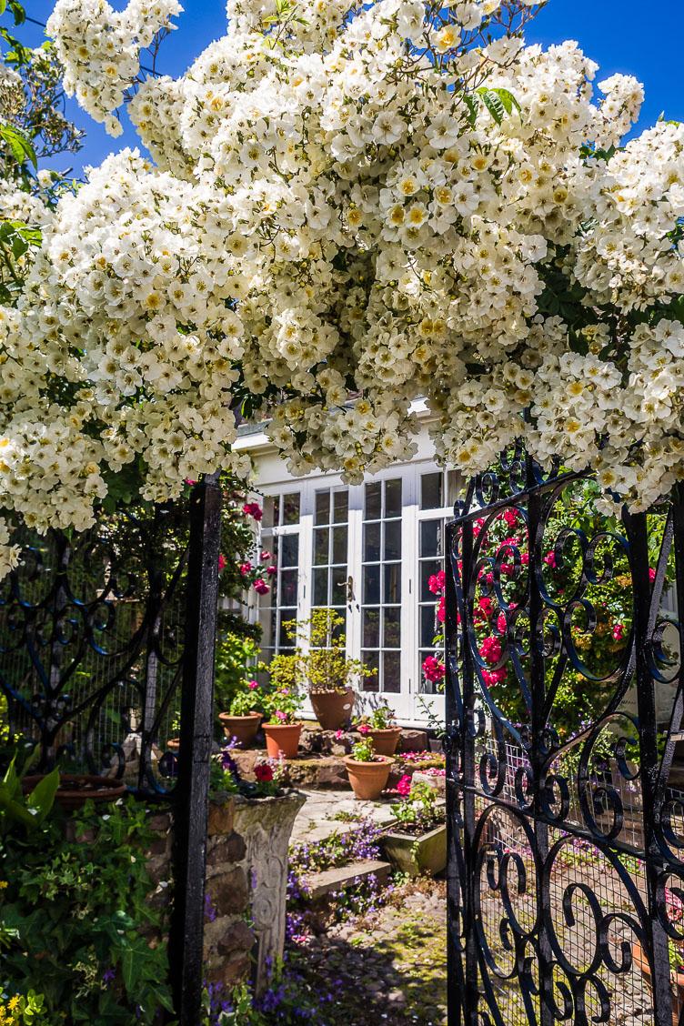 GB150107-E-Dunster-Flower-ornamented-Gate.jpg
