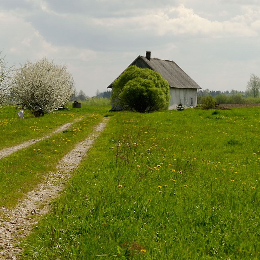 LE080427-Farmland.jpg