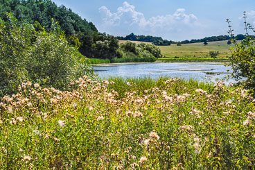 SL15254-Edit-Cerovo-countryside.jpg
