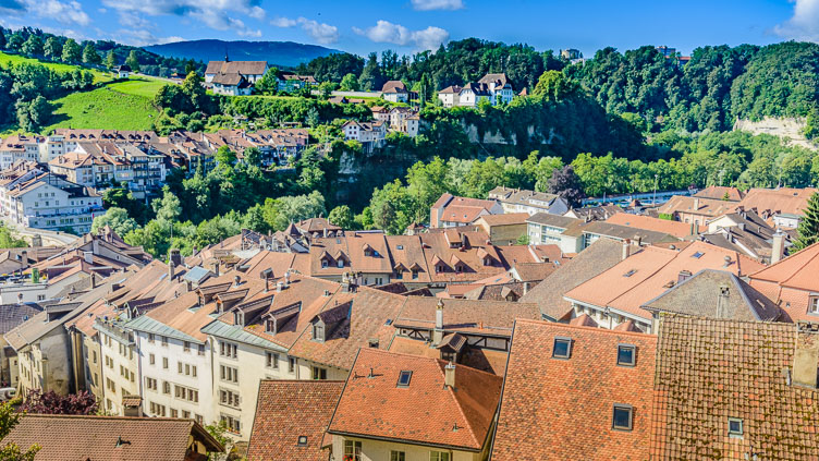 _D8C5707-Fribourg-city-view.jpg