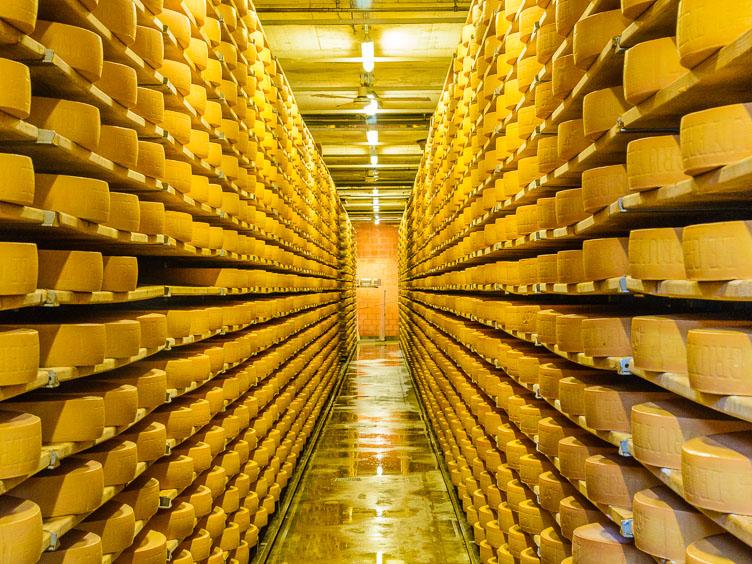 _D8C5728-Gruyeres-cheese-cellar.jpg
