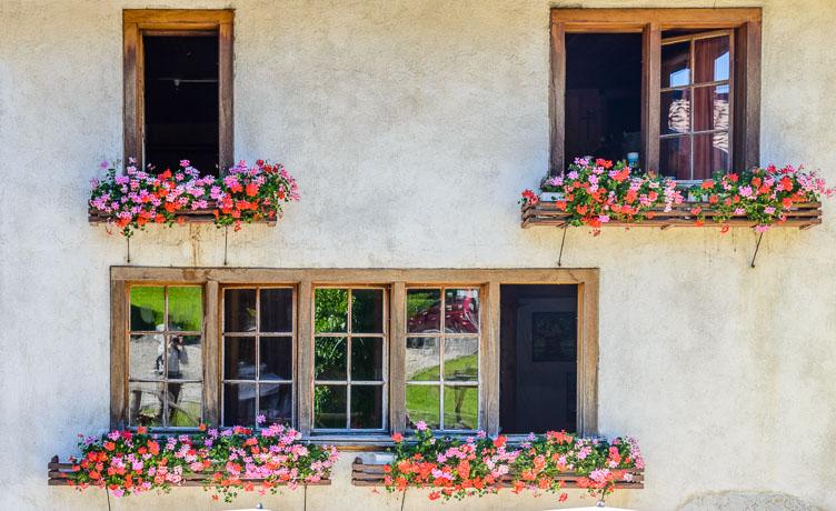 _D8C5846-Gruyeres-Windows-with-flowers.jpg